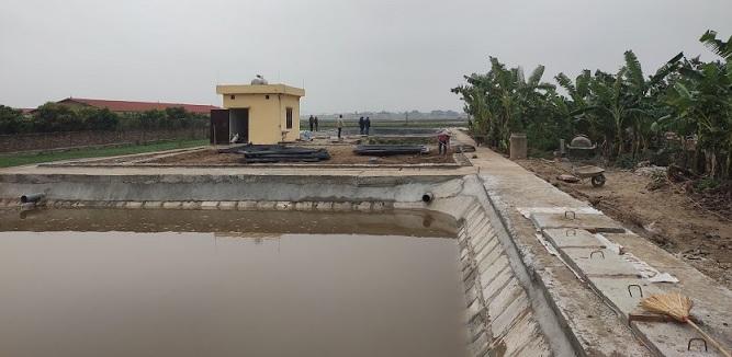 Khu xử lý nước thải chăn nuôi lợn tập trung