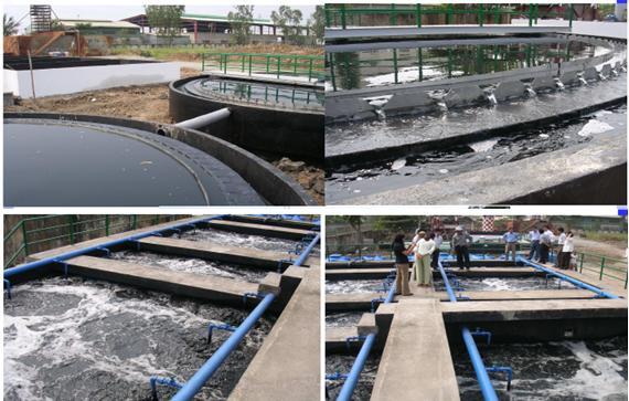 Bể xử lý nước thải chăn nuôi heo - lợn