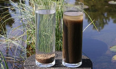 Bùn vi sinh thiếu khí trong xử lý nước thải bằng vi sinh