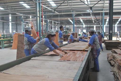 Nhà máy ván ép gỗ