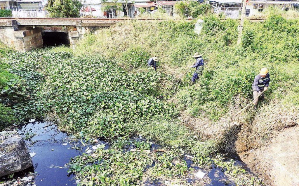 Kênh thoát nước hạ lưu hồ Bàu Trảng