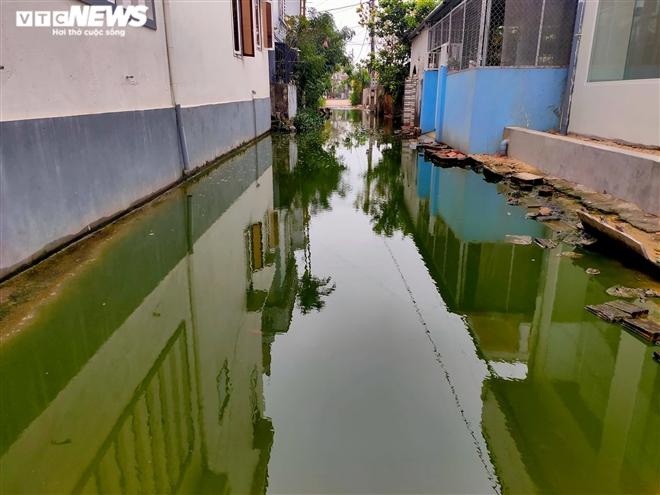 Con ngõ 64 đường Tôn Đức Thắng ngập trong nước thải xanh lè